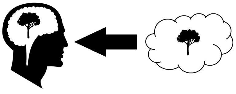 Idealism theory of perception