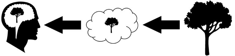 Indirect Realism theory of perception