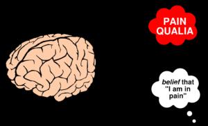 epiphenomenal qualia